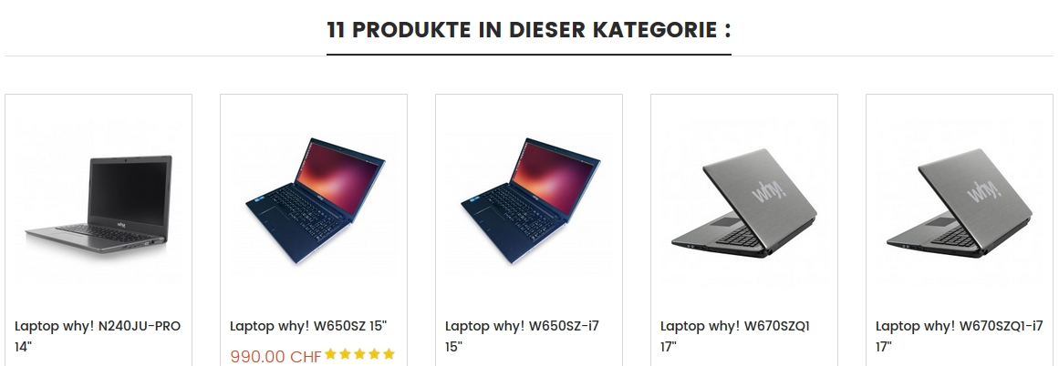 Schneller Linuxlaptop